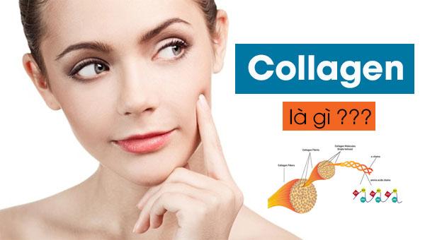 Điểm danh top 4 loại collagen tốt nhất hiện nay